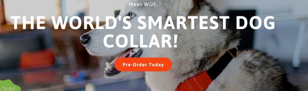 WÜF verspricht, das weltweit erste intelligente Hundehalsband zus ein!