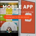 Mit der WÜF App für Android das Hundehalsband steuern